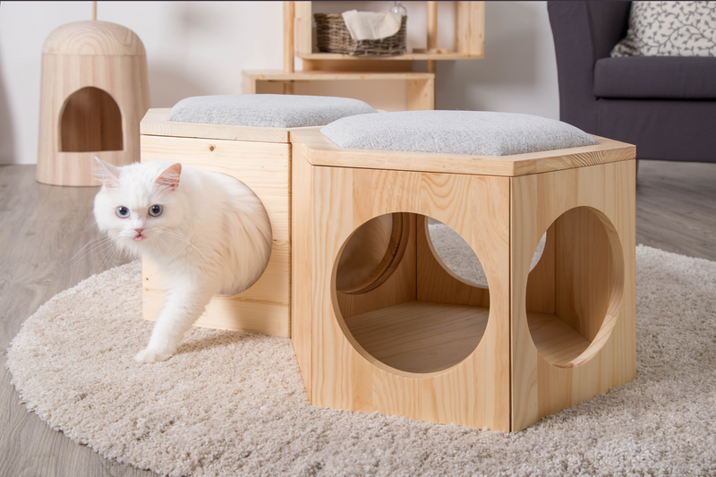 a white cat walks out from a cat furniture