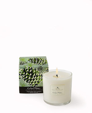 Soap & Paper Factory Roland Pine Soy Candle 5 oz
