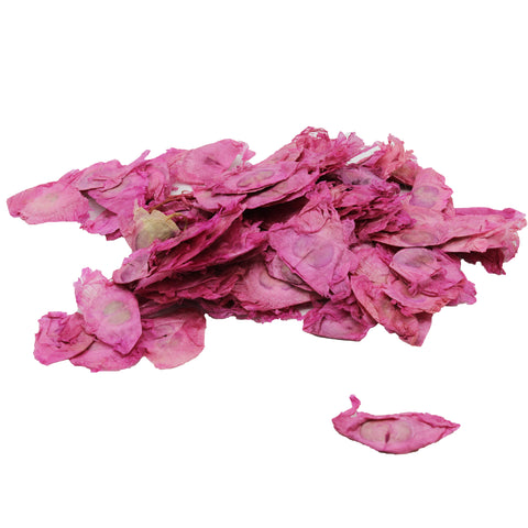 Dried Angel Wings - Pink