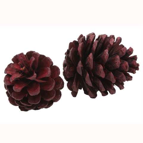 Colored Pinecones - Red - Jodhshop