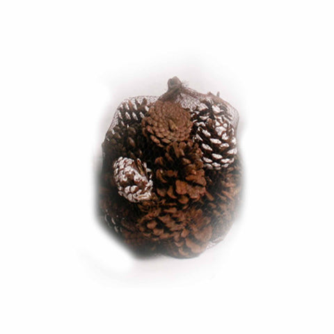 Cinnamon Scented Frosted and Natural Pine Cones in Net - 20 ounces - Jodhshop