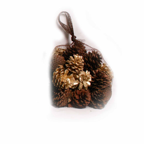 Gingerbread Scented Gold/Natural Pine Cones in Net - 20 oz - Jodhshop