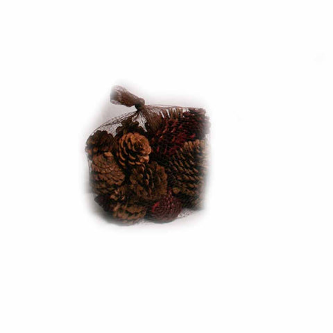 Natural and Red Pine Cones in Net - 20 ounces - Jodhshop