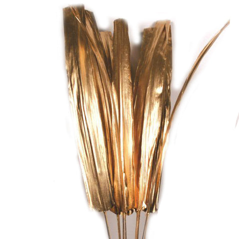 Gold Buri Tips - 60 inches tall - Jodhpuri Online