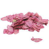 Dried Angel Wings - Pink - Jodhshop