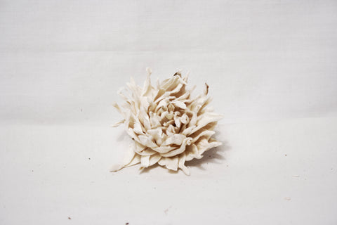 Tip Lotus White Sola Flowers - Jodhshop
