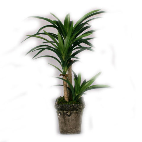Light Green Yucca Artificial Plant - 14 inches - Jodhpuri Online
