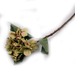 """Pear"" Hydrangea Artificial Floral Stems - Jodhshop"