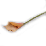 "Copy of ""Apple Pie"" Golden Arum Lily Artificial Floral Stem - Jodhshop"