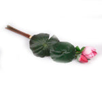 """Raffia Wine"" Water Lily Artificial Floral Stem - Jodhshop"