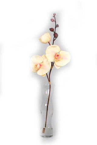 Orchid Wave Flower in Vase - Jodhshop