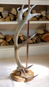 Large Antler Floor Lamp