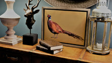 Load image into Gallery viewer, Mustard Pheasant Framed Picture.