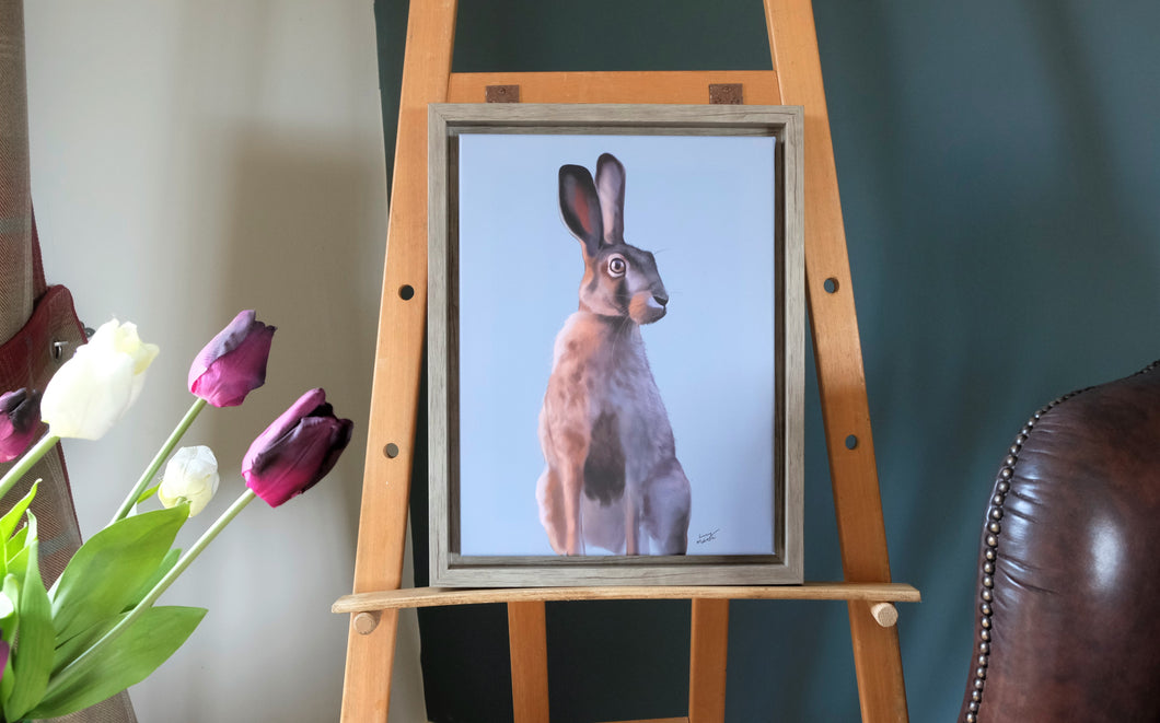 Soft Blue Summer Hare Framed Picture.