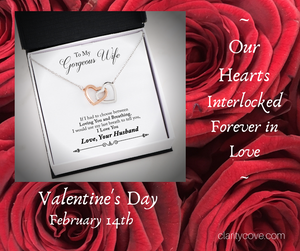 Valentine's Day Jewelry for Your Wife, Fiance, Girlfriend, Daughter, Mom and Your Pets!