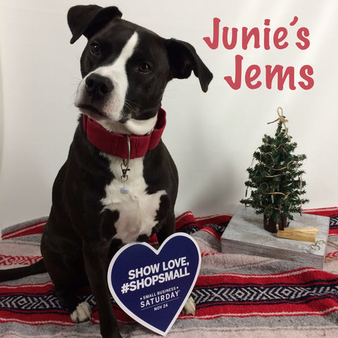 junie's jems healing crystal collar charms for dogs cats pets clarity cove