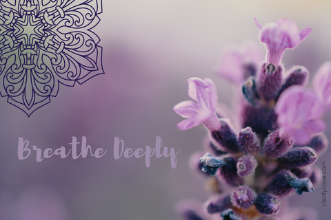 breathe deeply clarity cove mandala meditation card