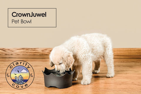vitajuwel gemwater pet bowl from clarity cove