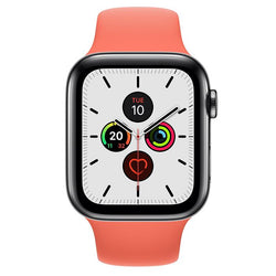 Apple Watch Series 5  - Space Black Stainless Steel - Sport Band