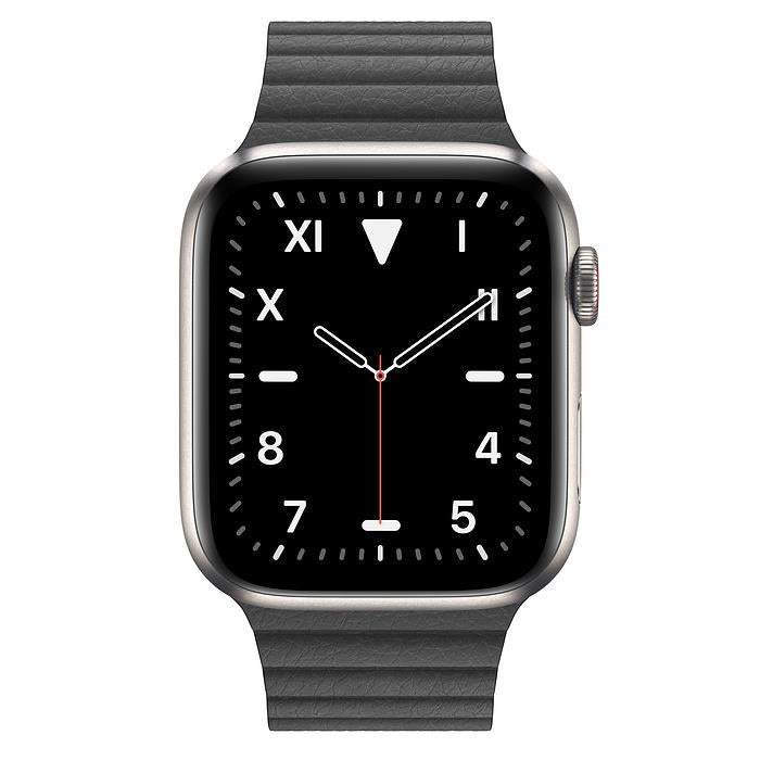 Apple Watch Series 5  - Titanium Edition - Leather Loop