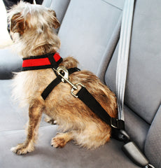 Doggie Seatbelt - Easy Seat belt for Small Dogs