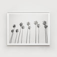 Palm Tree Print | Monochrome - Pretty in Print Art