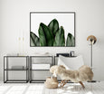 Tropical Leaf Print | Botanical Art