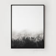 Misty Forest Photography | Black & White Landscape Photography - Pretty in Print Art