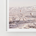 Hot Air Balloon Photography | Mountain Art | Landscape - Pretty in Print Art