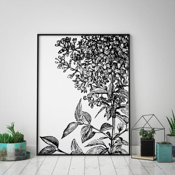 Botanical Plant Print II | Illustration - Pretty in Print Art