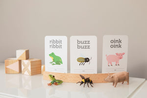 Two Little Ducklings. Animal sounds flash card. Frog, bee and pig sounds. Australian made flash cards for kids.