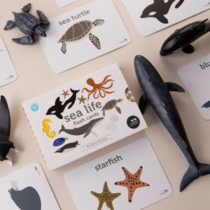 Sea life creature flash cards that are Australian made on sustainably sourced paper by Two Little Ducklings sold by Gumnut Kids