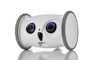 Skymee Owl Robot: Mobile Full HD Pet Camera with Treat Dispenser, Interactive Toy for pets via App - Skymee Store