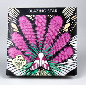Blazing Star | Hudson Valley Seed Co. - InRugCo Studio & Gift Shop