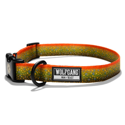 brooktrout dog collar wolfgang man and beast