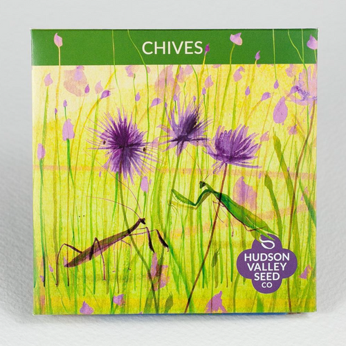 Chives | Hudson Valley Seed Co. - InRugCo Studio & Gift Shop