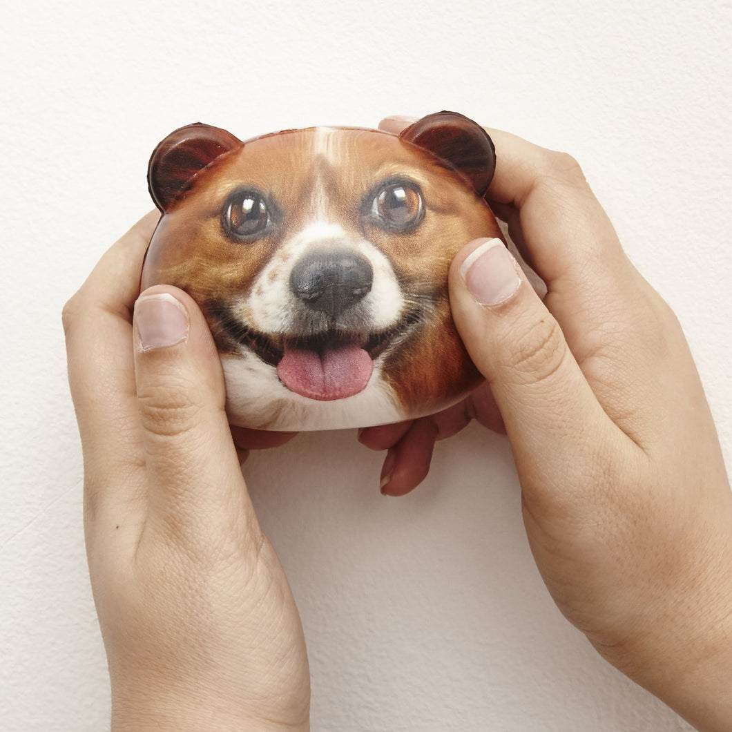 corgi dog stress ball