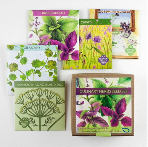 Culinary Herbs Seed Set 5-Pack | Hudson Valley Seed Co. - InRugCo Studio & Gift Shop
