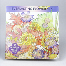 Load image into Gallery viewer, everlasting flower mix Hudson valley seed co