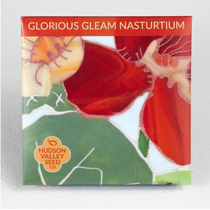 Glorious Gleam Nasturtium | Hudson Valley Seed Co. - InRugCo Studio & Gift Shop