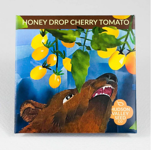 Honey Drop Cherry Tomato | Hudson Valley Seed Co. - InRugCo Studio & Gift Shop
