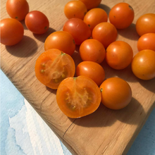 Load image into Gallery viewer, Honey Drop Cherry Tomato | Hudson Valley Seed Co. - InRugCo Studio & Gift Shop