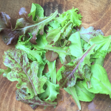 Load image into Gallery viewer, Metta Lettuce Mix | Hudson Valley Seed Co. - InRugCo Studio & Gift Shop