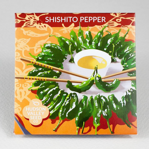 Shishito Pepper | Hudson Valley Seed Co. - InRugCo Studio & Gift Shop