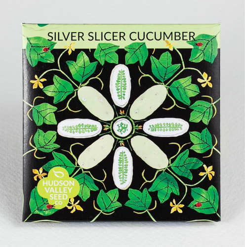 silver slicer cucumber Hudson valley seed co