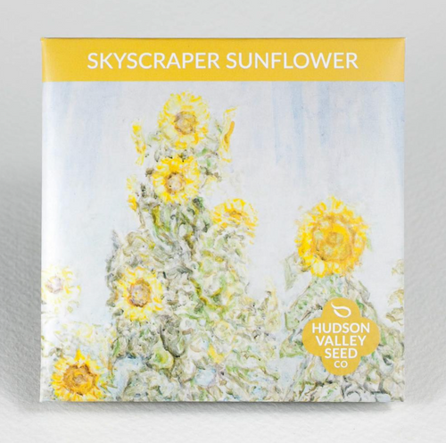 Skyscraper Sunflower | Hudson Valley Seed Co. - InRugCo Studio & Gift Shop