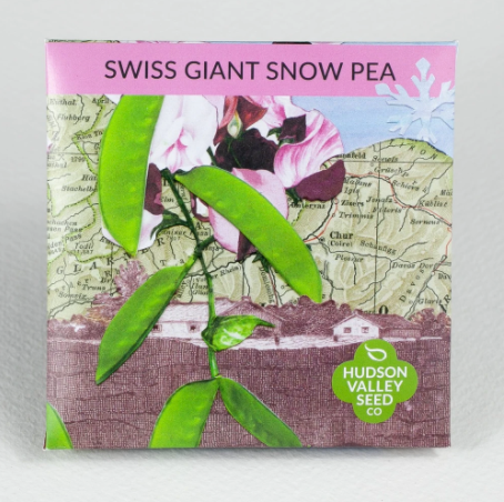 Swiss Giant Snow Pea | Hudson Valley Seed Co. - InRugCo Studio & Gift Shop