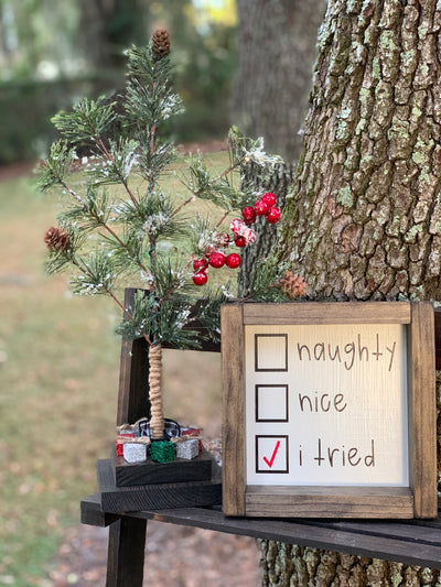 Naughty, Nice, I Tried is shown displayed on a ladder outside with our mini Christmas Tree.  Each item sold separately.