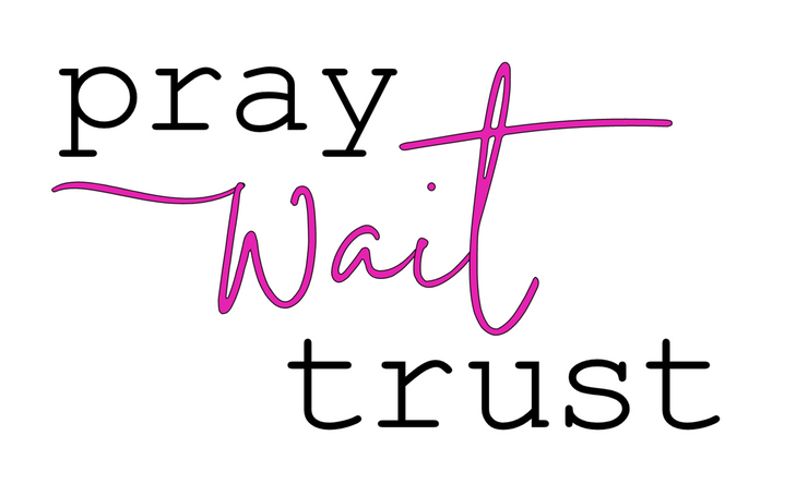 Pray, Wait, Trust Vinyl Decal Stencil can be ordered in two sizes.  This is a one and done stencil.  Cannot be reused.