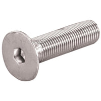 Allen-Drive FHSC Screw Stainless